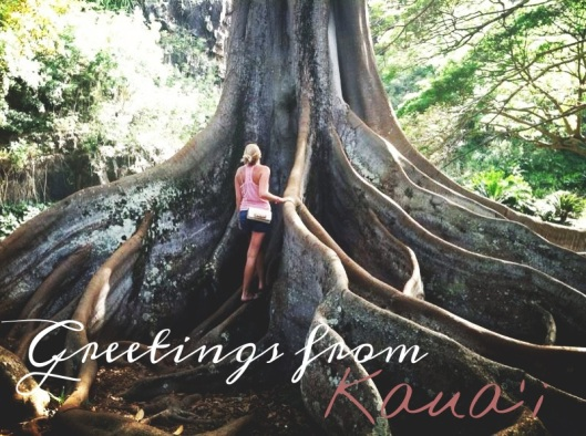 Kauai Travel Blog Hawaii San Francisco Travel Blogger Natalie Grinnell